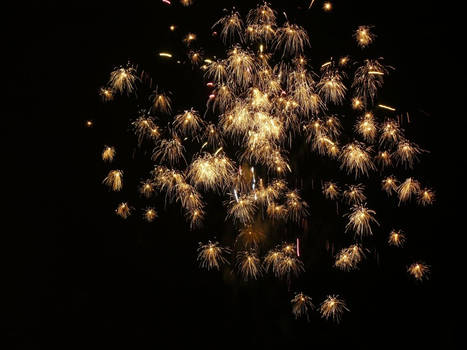 FIREWORKS II. 2010-2011