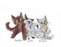 Hawkkit, Icekit, and Mistkit by Iceheart-Lunarae