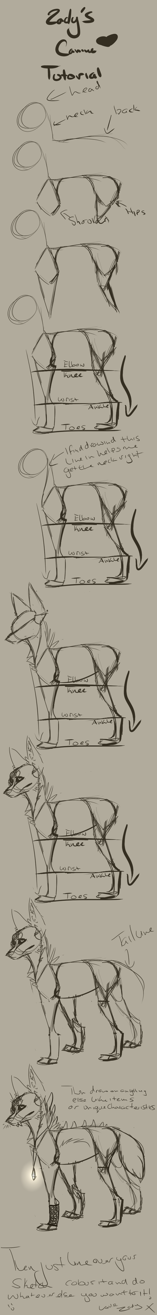 canine tutorial by Z-A-D-Y