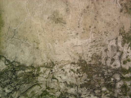 Wall Texture 03 by manuelvelizan