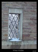 Winter Window by jadeoracle