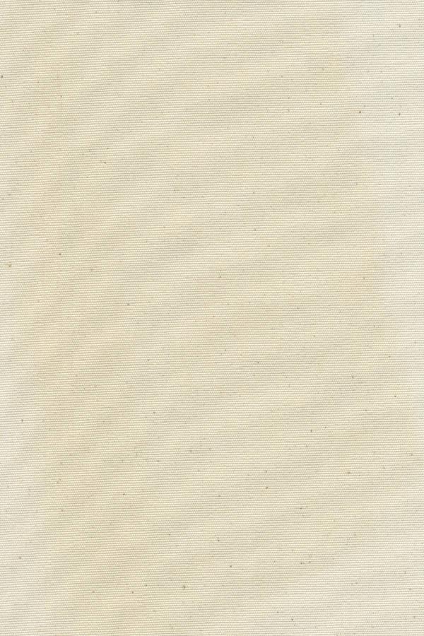 Canvas Texture by flatfourdesign