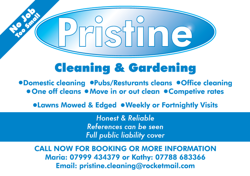 Pristine Cleaning Leaflet By Flatfourdesign On Deviantart
