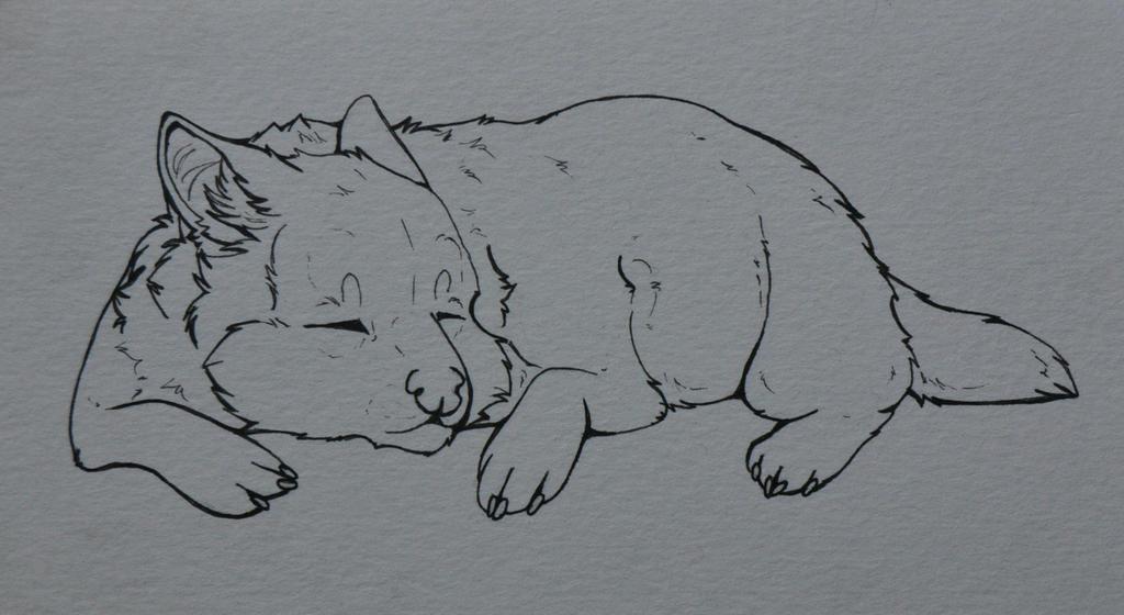 Sleepy by Alluffer