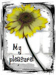 Yellow Grunge Flower My Pleasure by recycledrelatives