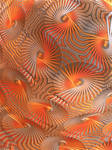 Tangerine Works