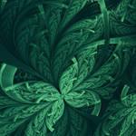 Foliage Fractal