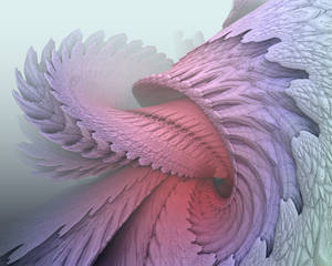 Evolving Spiral