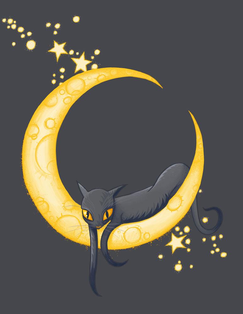 cat on the moon by str4yk1tt3n