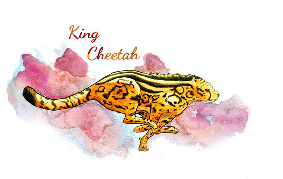 King Cheetah