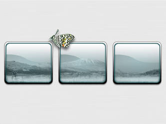 Nature windows by overlord59