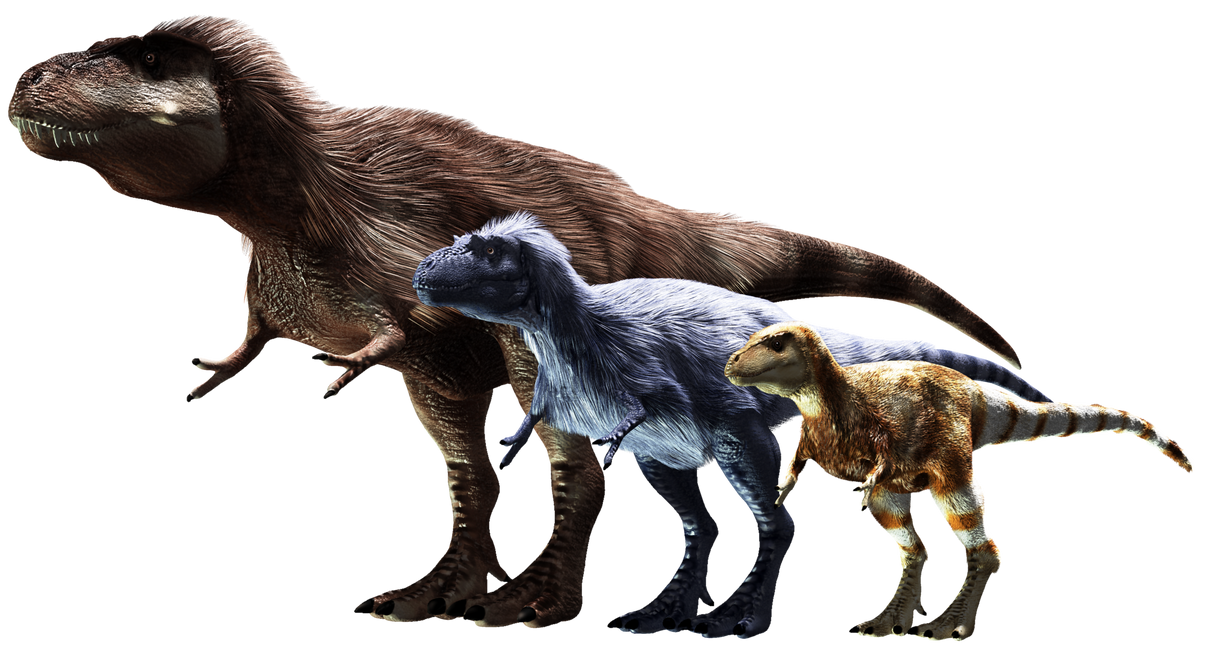 tyrannosaur_lineup__old__by_sketchy_raptor-d6lie0h.png