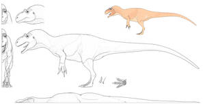 Allosaurus Model Sheet - The Mesozoic Project