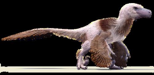 Dakota's Plunderer by Sketchy-raptor
