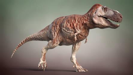 Tyrannosaurus rex 3D life reconstruction (Blender)