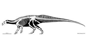 Tenontosaurus skeletal reconstruction
