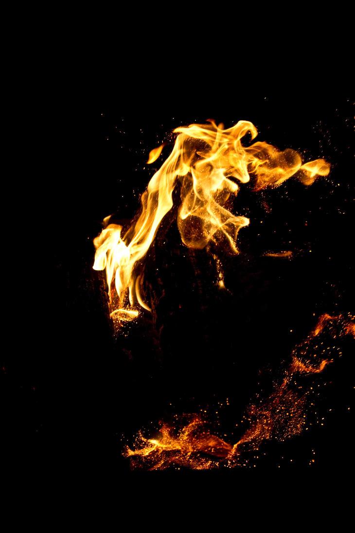 fire 30 by Sealyanphoenix