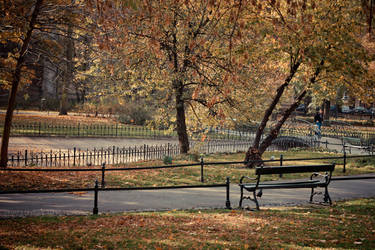 autumn-ish by marchefkowy-potfor