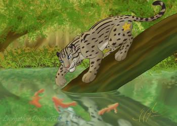 Paopu (Commission) by Leorgathar