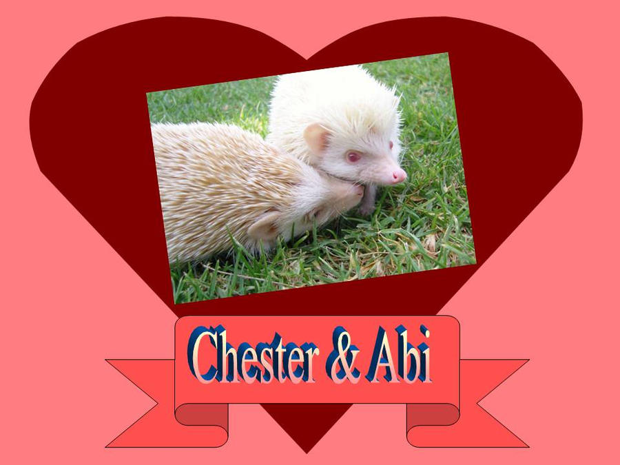 Chester y Abi by zilia-k
