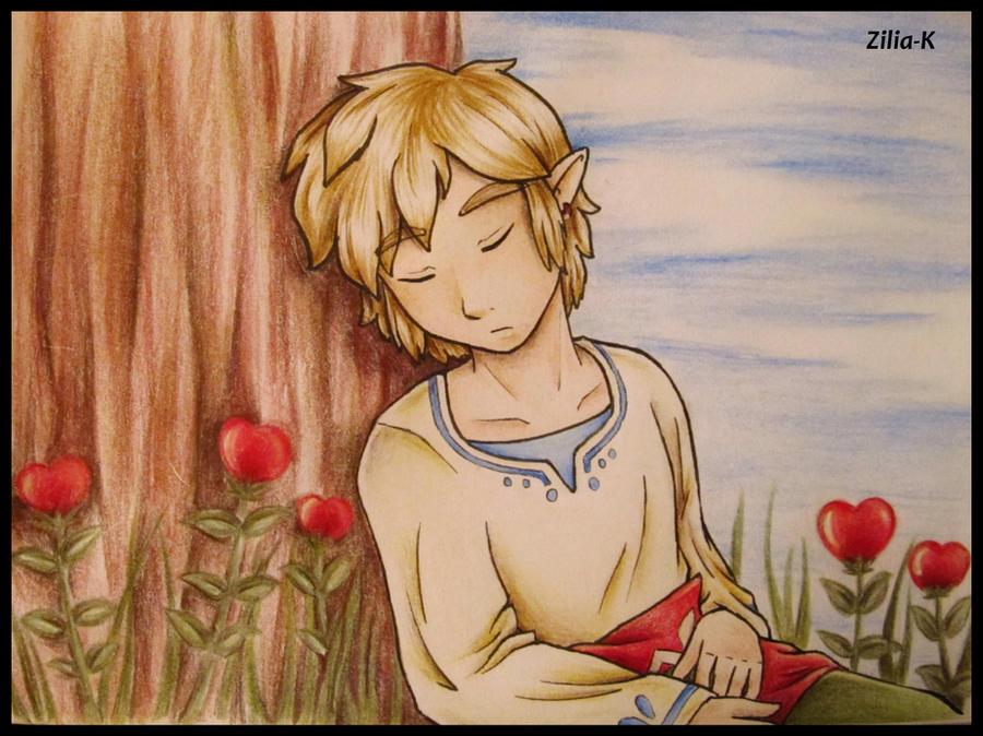 Link sleep by zilia-k