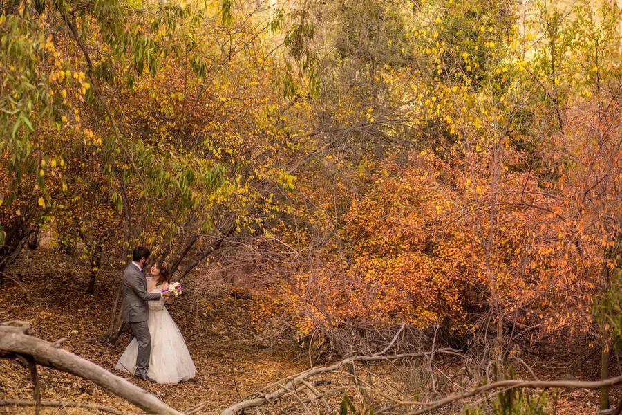 Autumn wedding by zilia-k