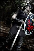 Dark Link - Warrior by KellyJane