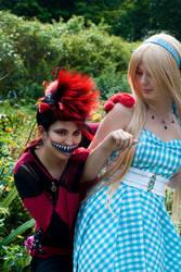 Wonderland - We're All Mad Here by KellyJane
