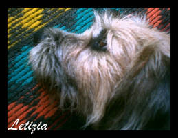 Dreaming... by Letizia
