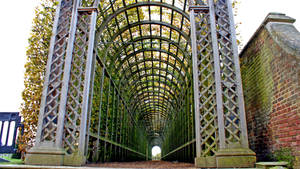 Arbor at the Hampden by satsui