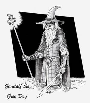 gandalf the grey dog