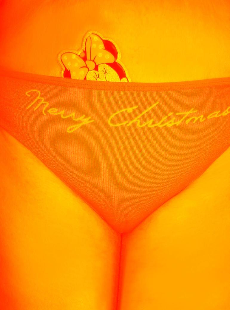 Merry Christmas by melisa311