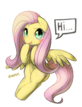 Flutter shy