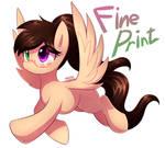Commission 13 : Fine print