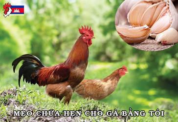 Chua-hen-cho-ga-bang-toi-3