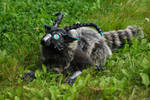 fluffy horned chimera 1 by LordBurevestnik
