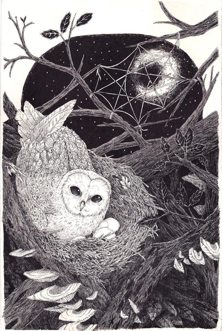 Nest by butterflyvomit
