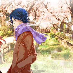 Underneath the Cherry Trees by kurohiko