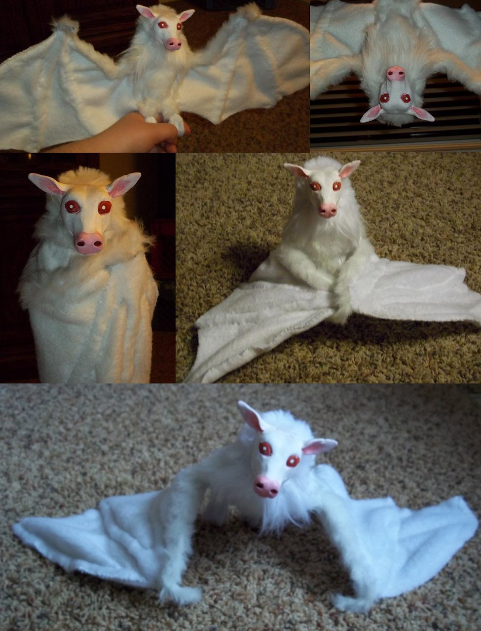 Albino Fruitbat by Plus3Defense