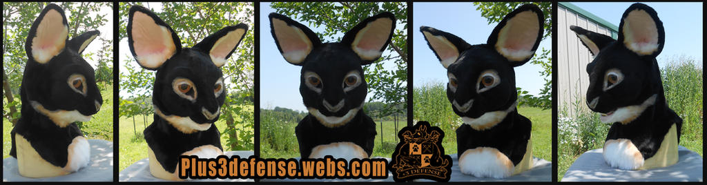 Bunny partial by Plus3Defense