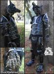 Black Wolf Armor