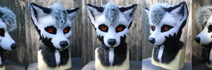 Wolf Partial 2015