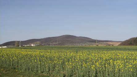 my village by Fantomi1996