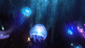 Rebirth under Sea