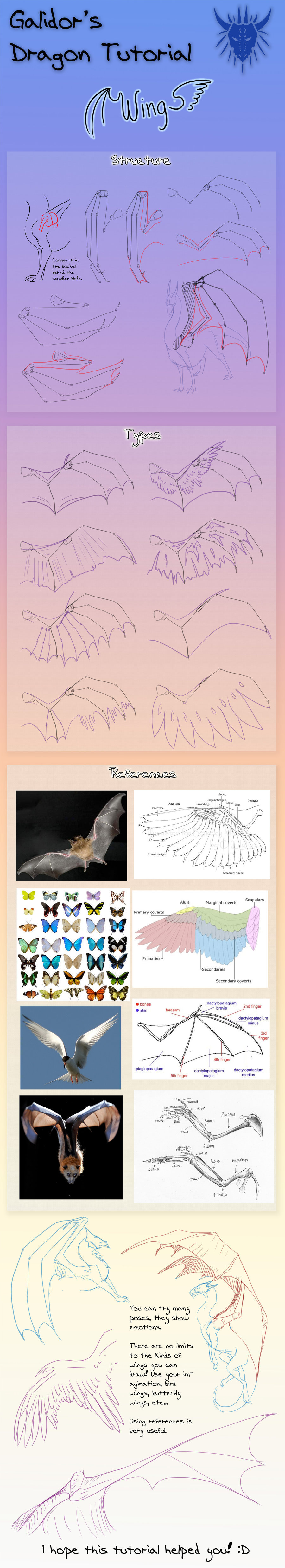 Dragon Wing Tutorial by Galidor-Dragon