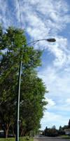 Vertical Panoramic Feet Sky
