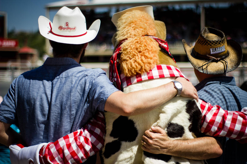 Friends At The Rodeo by lonnietaylor