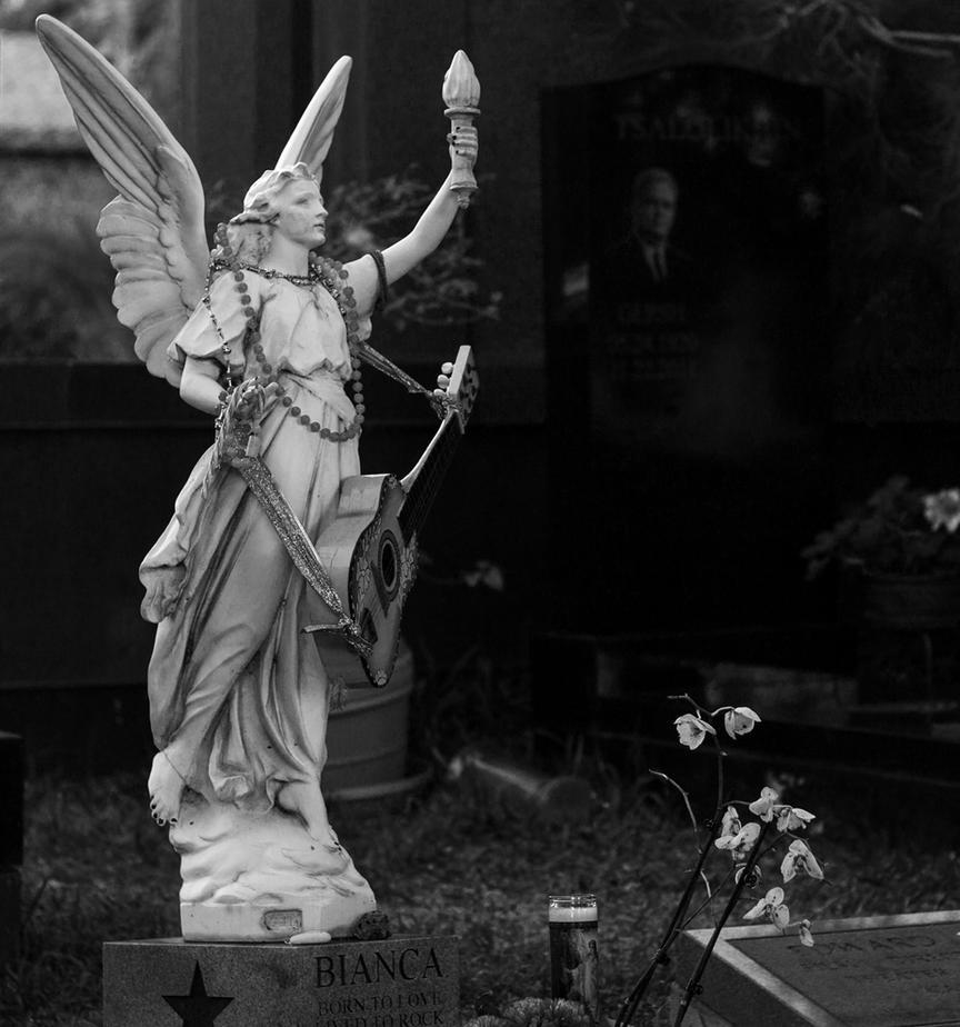 Angel by missdolkapots