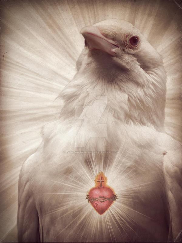 DayDream - Sacred Crow by Papillon-Noir-Art