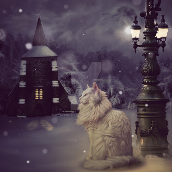 Waiting in the Snow by Papillon-Noir-Art